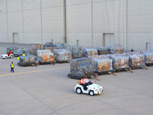 Relief and survival items airlifted to cyclone-hit Madagascar under direction of UAE Vice President